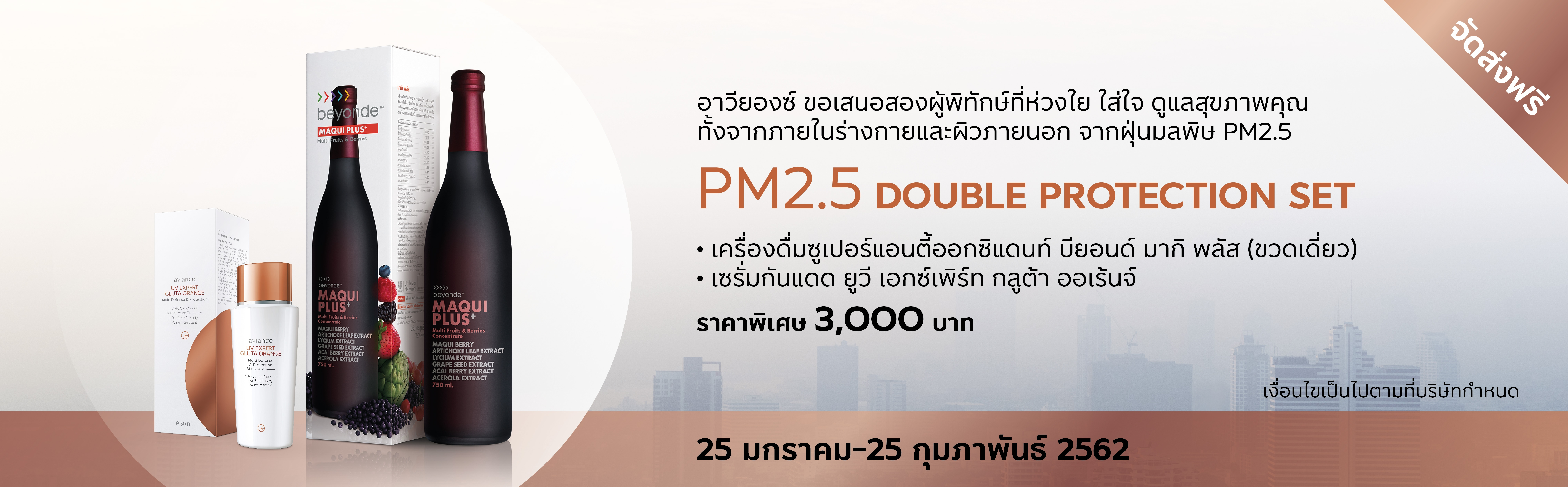 PM 2.5 Double Protection Set 2019